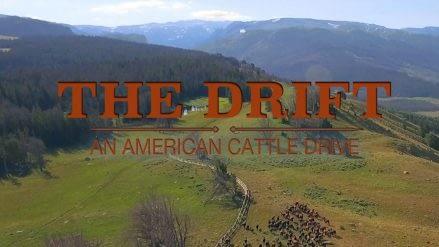 The Drift Website Block - 02